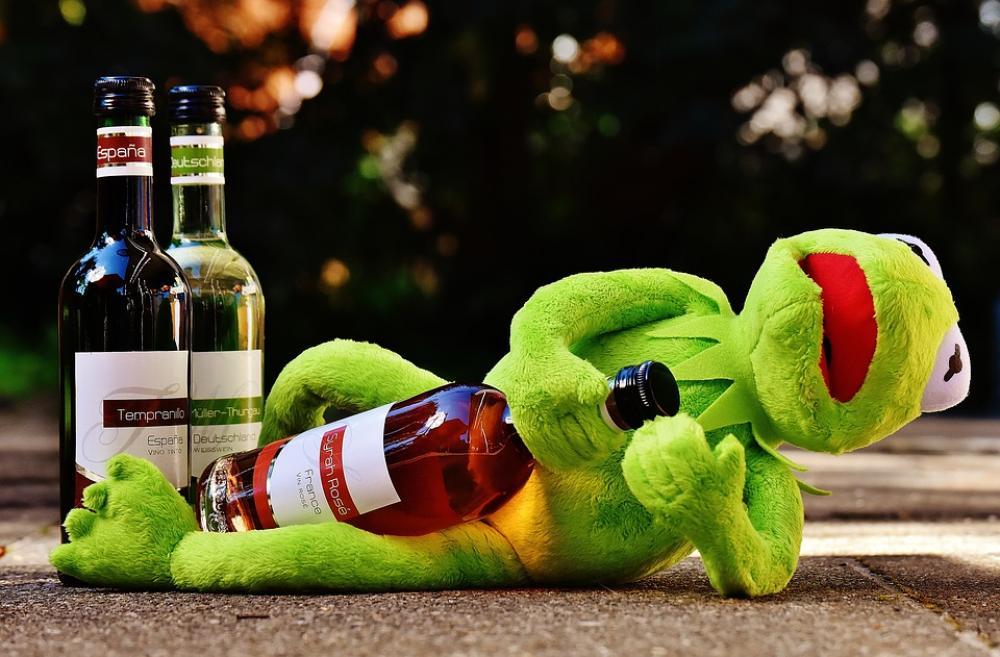 Kermit Frog Wine Drink Alcohol Drunk Rest Sit Image Finder