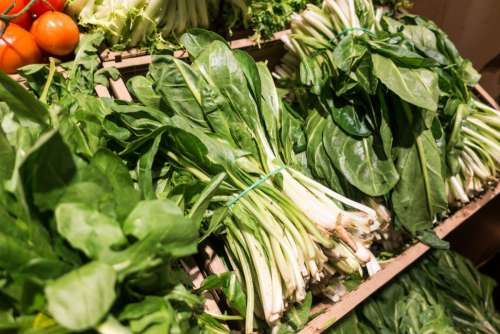 Bunch of Pak Choi in a grocery store
