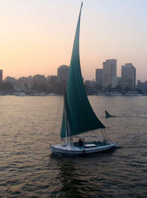 A boat in the Nile, Cairo, Egypt free photo