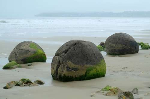 Boulders and rocks on the shore on Koekohe beach, New Zealand free photo