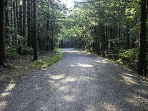 Carriage Road in Acadia National Park, Maine free photo