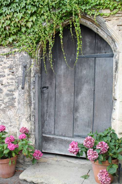 Door with flowers around it free photo