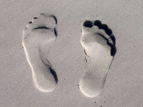 Footprints in the Sand free photo