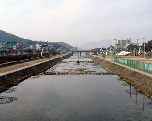 Landscape around the Jeongeupcheon  Stream in Jeongeup, South Korea free photo