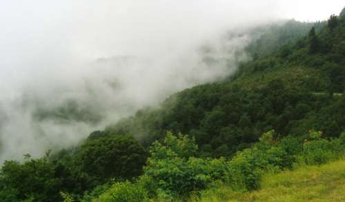 Low Clouds over the Hill at Great Smoky Mountains National Park, Tennessee free photo