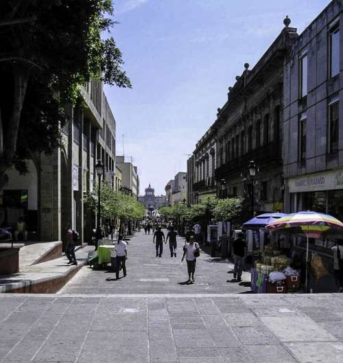 Morelos Street in downtown in Guadalajara, Mexico free photo