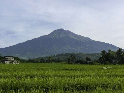 Mount Canlaon landscape in the Philippines free photo