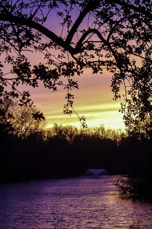 Sunset at Buckingham Lake in Albany, New York free photo