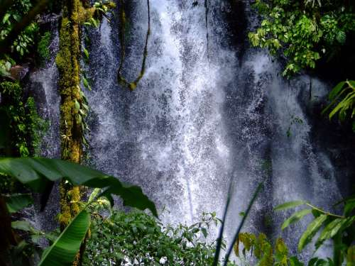 Torrenting Water coming down the waterfalls in the Philippines free photo