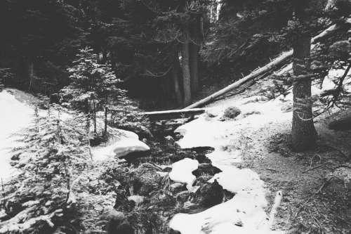 winter snow explore oregon