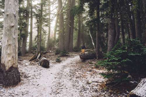 hike oregon wander winter
