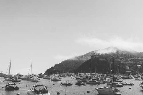 catalina sail boat harbor