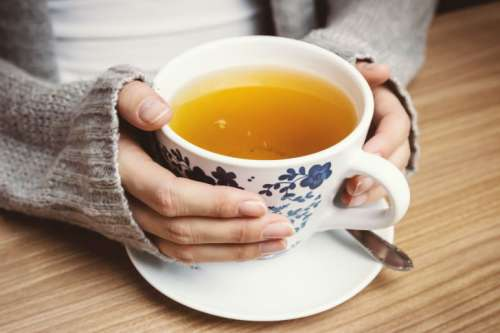 Female hands holding hot cup of tea