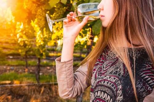 Gorgeous brunette woman having wine fun in the vineyards