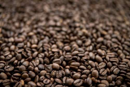 A shallow depth-of-field image of coffee beans