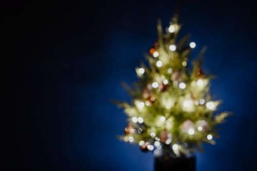 A blurred Christmas tree on a navy blue background