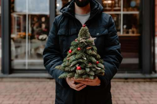 The man is holding a small Christmas tree with red decorations