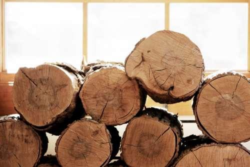 Sunlight & Firewood