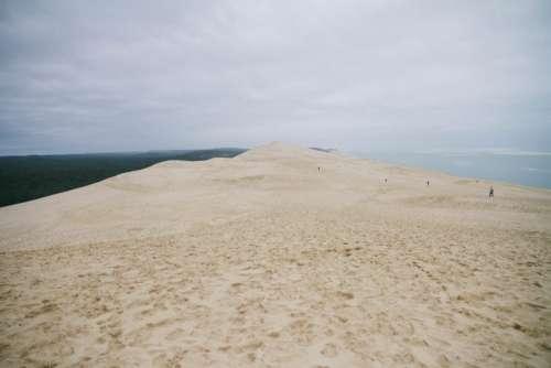 Pila Dune