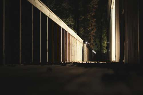 Woody Driveway