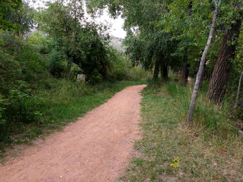 Dirt Path through Wooded Area