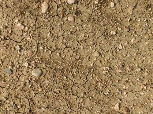 Dry Dirt Texture