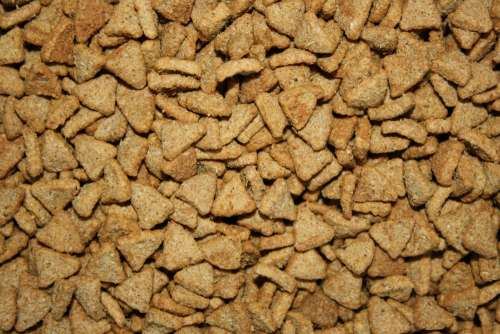 Dry Dog Food Texture