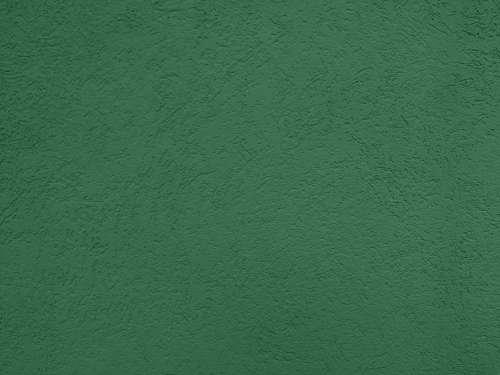 Green Textured Wall Close Up
