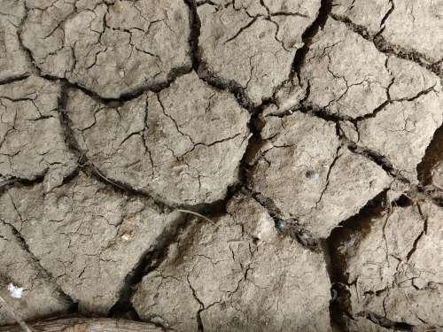Mud Cracks Texture
