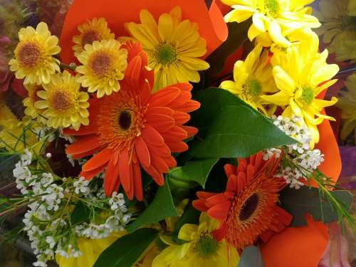 Orange and Yellow Flowers Bouquet Close Up