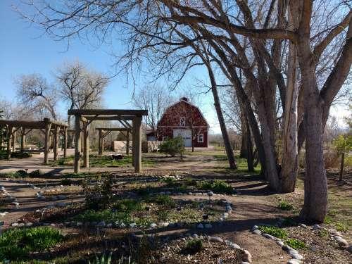 Spring Garden with Barn