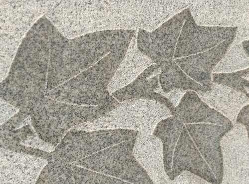 Textured Leaves Carved in Granite