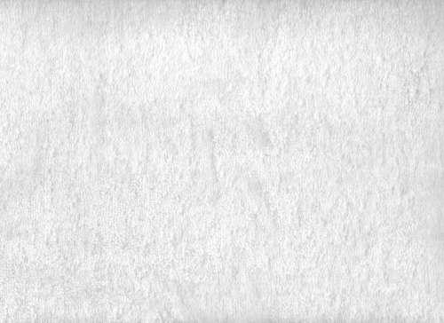 White Terry Cloth Towel Texture