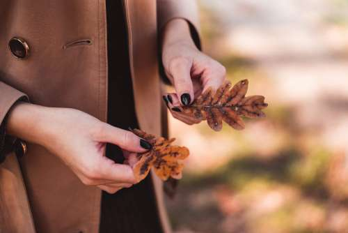 Woman in Trench Coat Holding Autumn Leaves