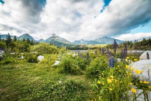 Beautiful Nature in High Tatras Mountains, Slovakia