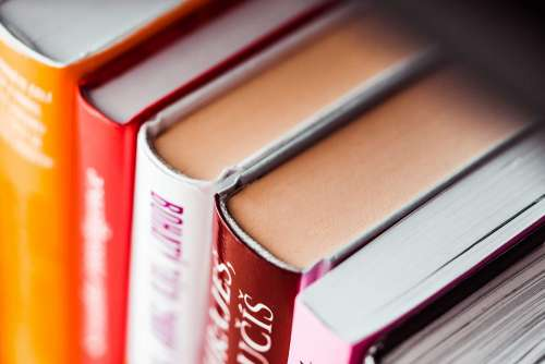 Books in Shelf Close Up
