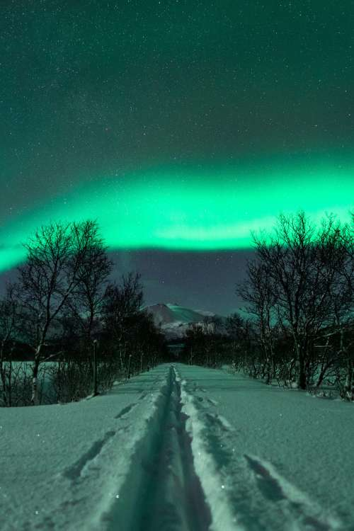 Cross Country Skiing Trail with Northernlights Vertical