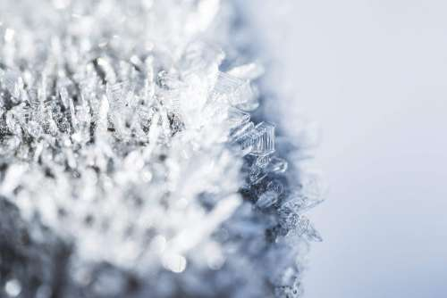 Morning Hoar Frost Frozen Snowflakes Close Up