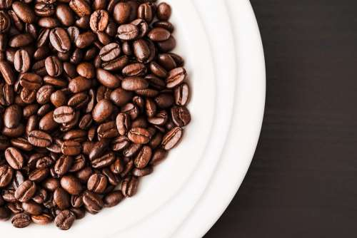White Bowl Full of Coffee Beans
