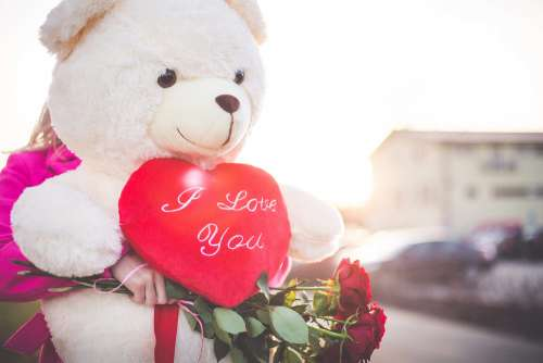 Woman Holding a Big Teddy Bear and Roses on Valentine's Day