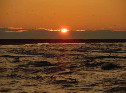 Abendstimmung Sunset North Sea Sea Coast