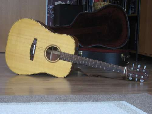 Acoustic Guitar Guitar Music Musical Instrument