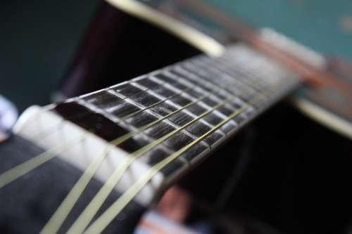 Acoustic Guitar Strings Guitar Musical Instrument