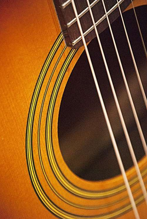 Acoustic Guitar Guitar Sound Musical Instrument