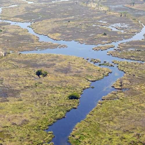 Africa Oka Okavango Delta Wilderness Botswana