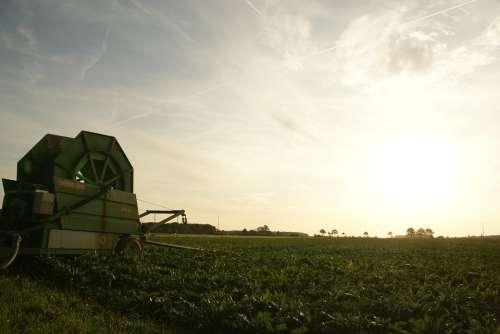 Agriculture Bauer Village