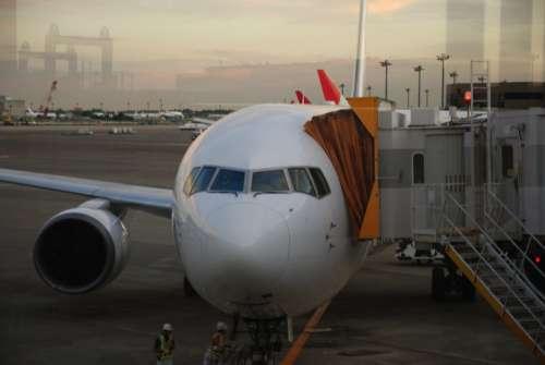Airplane Aircraft Airport Transportation Aeroplane