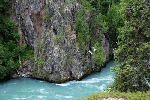 Alaska Landscape Wilderness Nature Water River