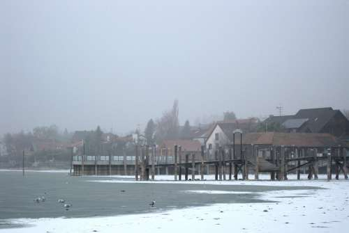 Allensbach Frozen Lake Constance Winter Web