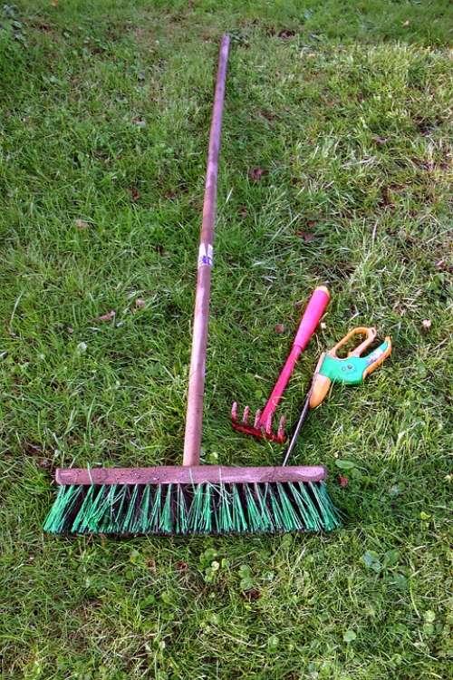 Allotment Gardening Equipment Broom Rush Nature